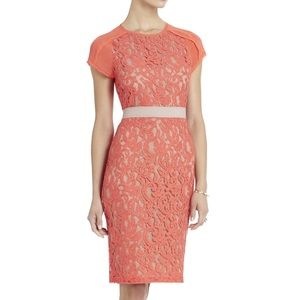 Elegant BCBG Chara floral lace dress size 2